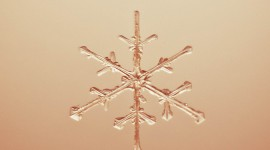 Snowflake Macro Wallpaper For IPhone