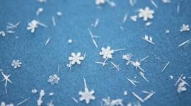 Snowflake Macro Wallpaper Free