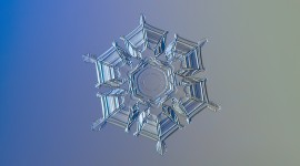 Snowflake Macro Wallpaper High Definition
