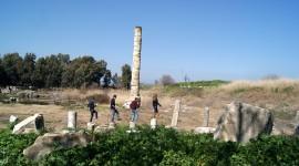 Temple Of Artemis Wallpaper HQ