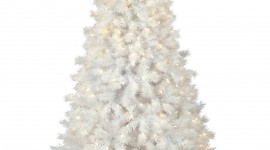 White Christmas Trees Wallpaper For Android#4