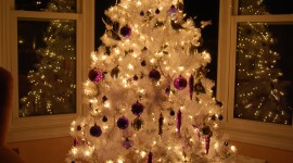 White Christmas Trees Wallpaper For IPhone