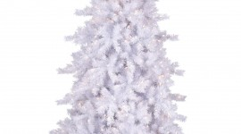 White Christmas Trees Wallpaper For IPhone#3