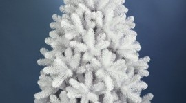 White Christmas Trees Wallpaper For Mobile#1
