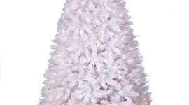 White Christmas Trees Wallpaper For Mobile#2