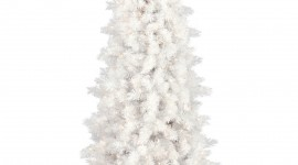 White Christmas Trees Wallpaper For Mobile#4