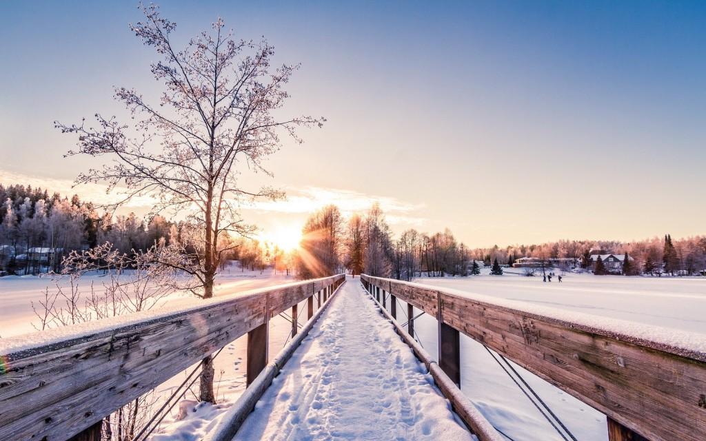 Winter Dawn wallpapers HD
