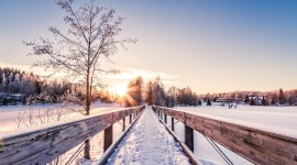 Winter Dawn Best Wallpaper