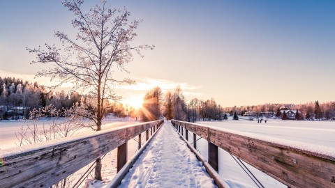 Winter Dawn wallpapers high quality
