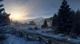 Winter Dawn Photo