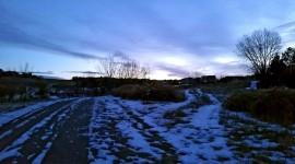 Winter Dawn Photo#1