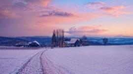 Winter Dawn Photo#2