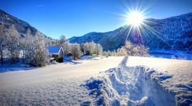 Winter Dawn Wallpaper