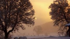 Winter Dawn Wallpaper Full HD#1