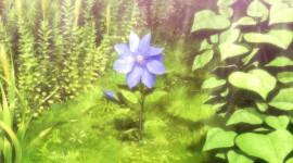 Zero Kara Hajimeru Mahou Image#2