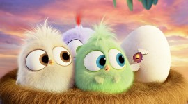 4K Angry Birds Best Wallpaper