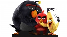 4K Angry Birds Desktop Wallpaper