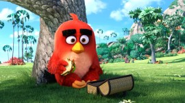 4K Angry Birds Desktop Wallpaper HD