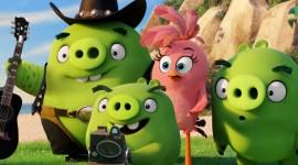 4K Angry Birds Image#1