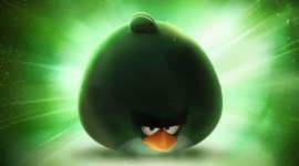 4K Angry Birds Picture Download