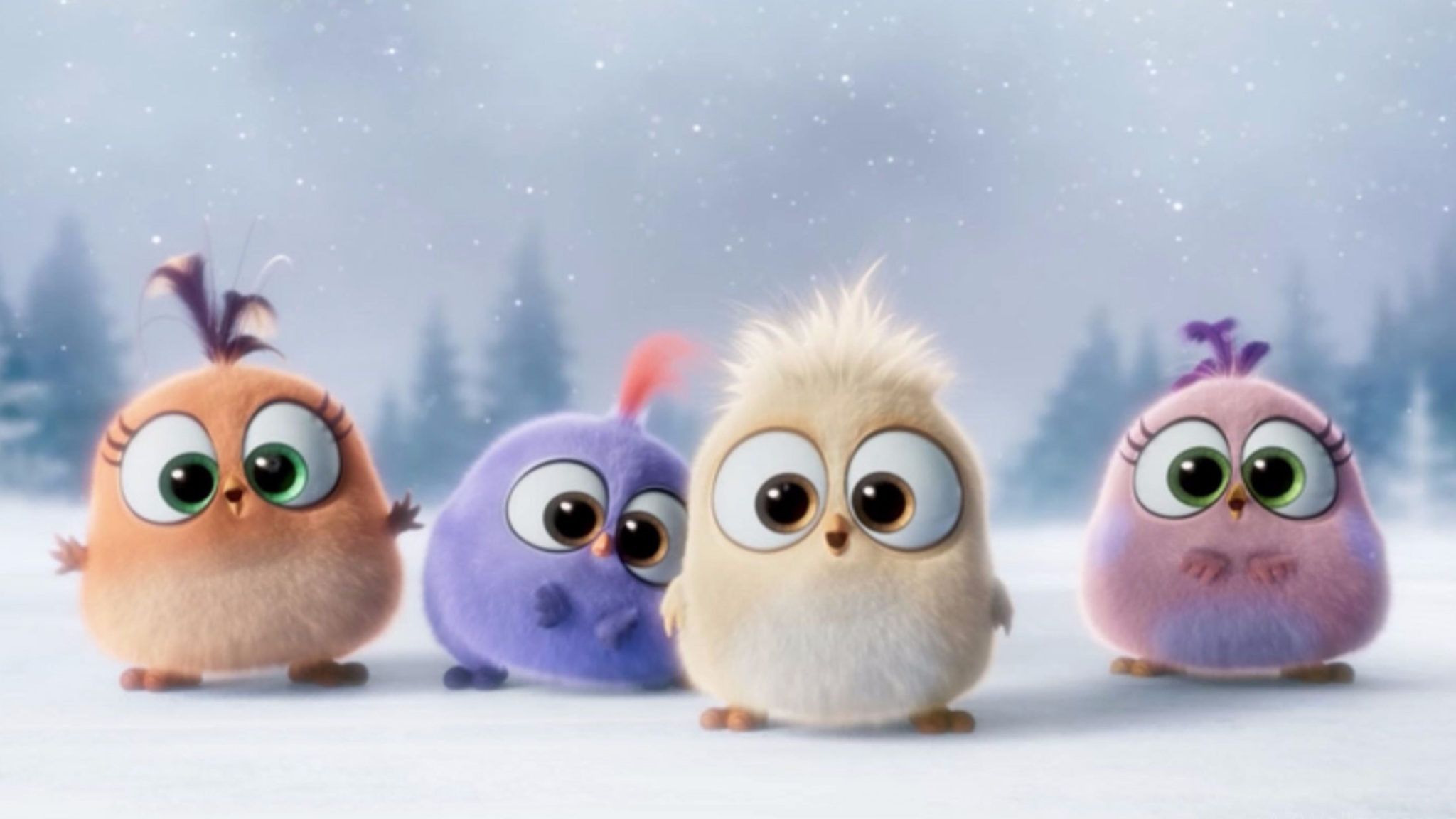 4k Angry Birds Wallpapers High Quality Download Free