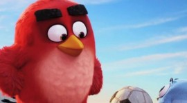 4K Angry Birds Wallpaper For Android