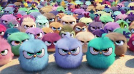 4K Angry Birds Wallpaper HQ