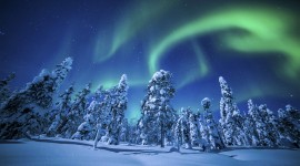 4K Northern Lights Wallpaper Free