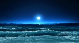 4K Sea Wolf Desktop Wallpaper HD