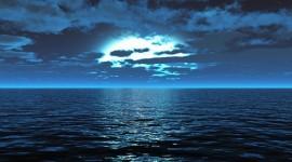 4K Sea Wolf Photo Download