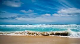 4K Sea Wolf Photo Free