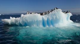 Antarctica Wallpaper Gallery