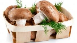 Basket Of Mushrooms Wallpaper