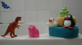 Bathtub Plugs Wallpaper Free