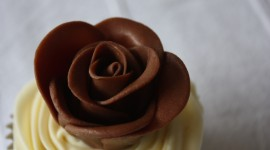 Chocolate Roses Best Wallpaper