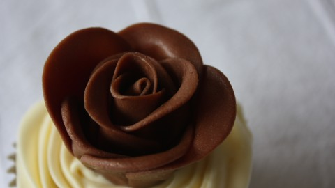 Chocolate Roses wallpapers high quality