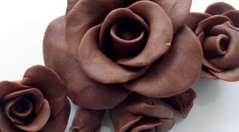 Chocolate Roses Wallpaper For PC