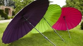 Colorful Umbrellas Photo