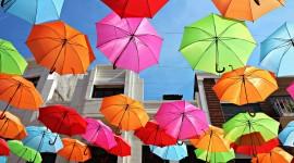 Colorful Umbrellas Wallpaper