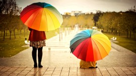 Colorful Umbrellas Wallpaper Download