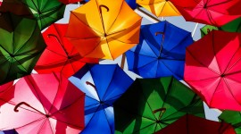 Colorful Umbrellas Wallpaper Gallery