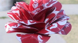 Duct Tape Bouquet Wallpaper Full HD