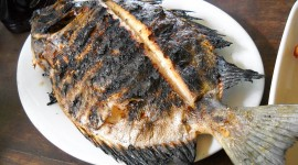 Fried Grilled Fish Wallpaper For Desktop