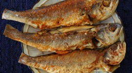 Fried Grilled Fish Wallpaper High Definition