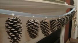 Garland Of Cones Photo Download