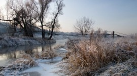 Grass In The Snow Wallpaper Gallery
