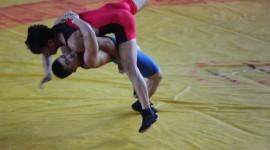 Greco-Roman Wrestling Wallpaper Download Free