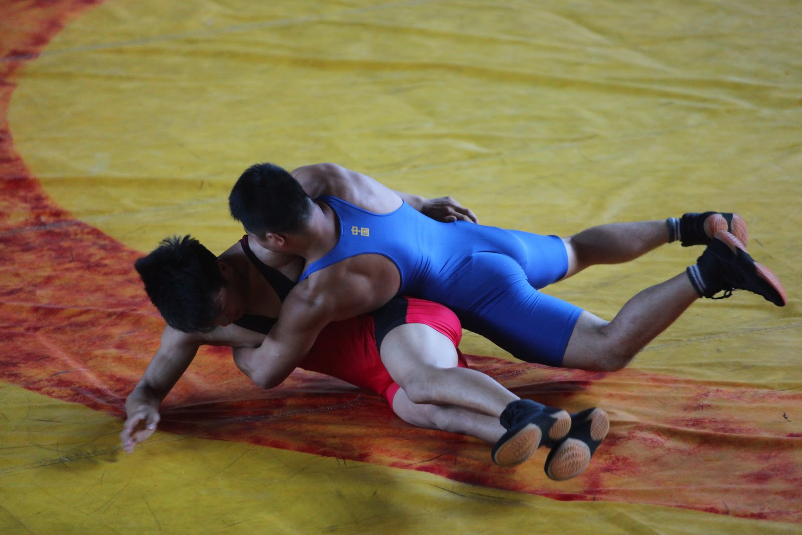 needs analysis greco roman wrestling physical education essay Training needs analysis essaysit is extremely important that learner support is established from the outset with any group in the modern learning environment this support must cater for a whole range of needs including emotional, financial, physical and practical.