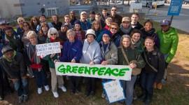 Greenpeace Wallpaper