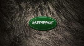 Greenpeace Wallpaper Download